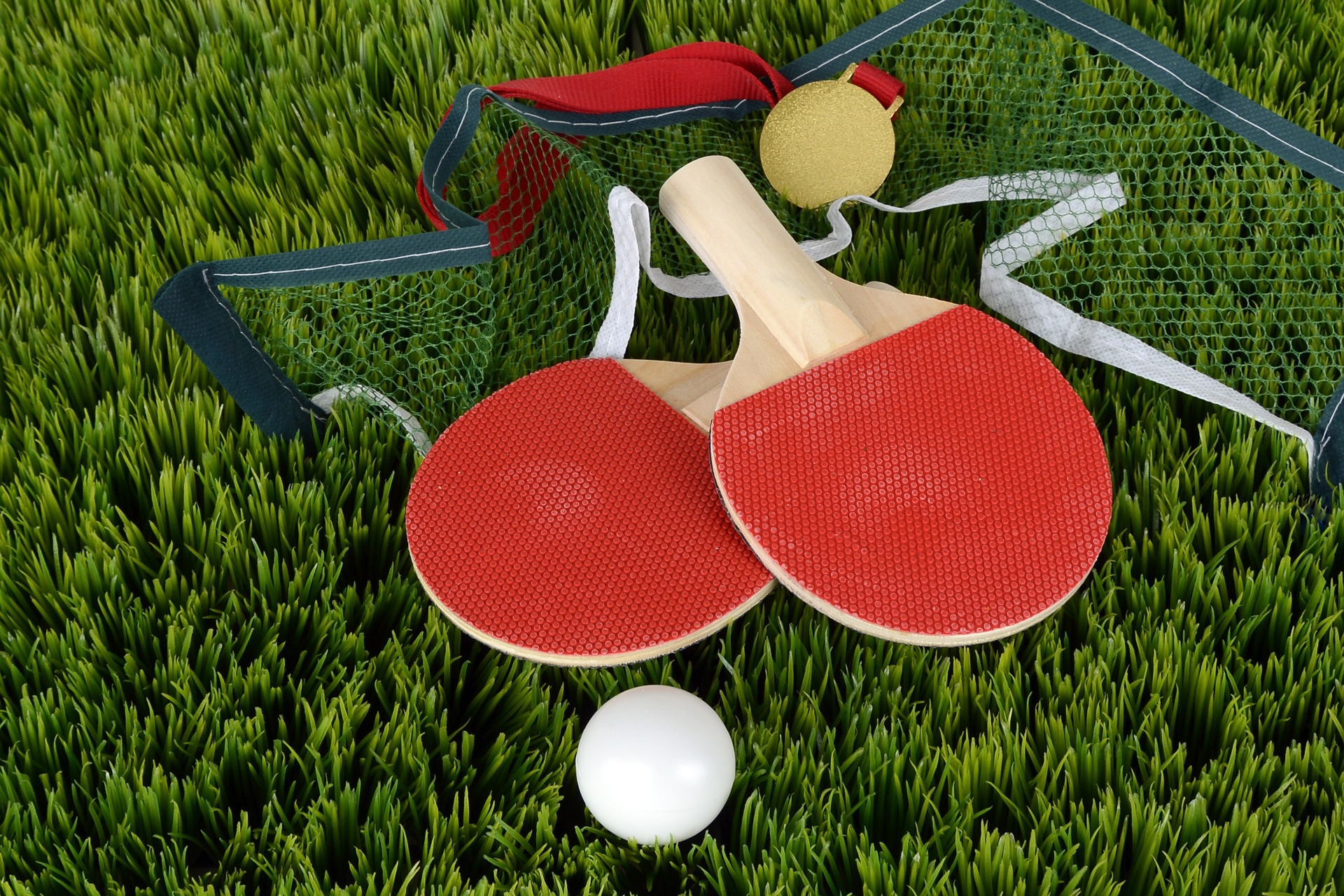 Best Tabble Tennis Paddle